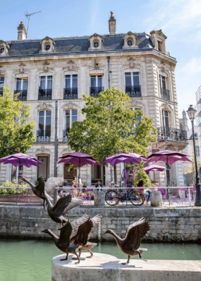 Post instagram de la ville de Troyes, des oiseaux prennent leur envole